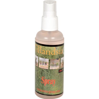 Tillandsie Spray mini 125 ml