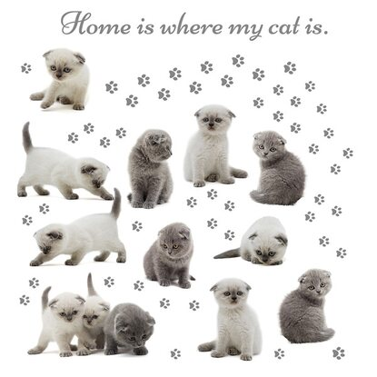 Eurographics Deco Sticker Home is Where my Cat is 50 cm x 70 cm