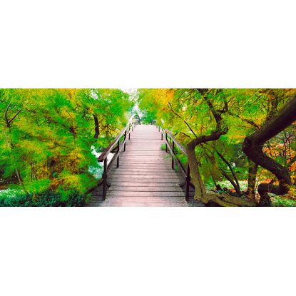 Eurographics Dekorativní sklo Bridge To Greenery 50 cm x 125 cm